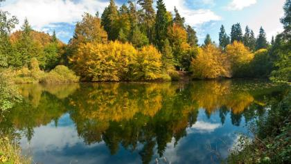 Perdsbrunner Weiher im Herbst