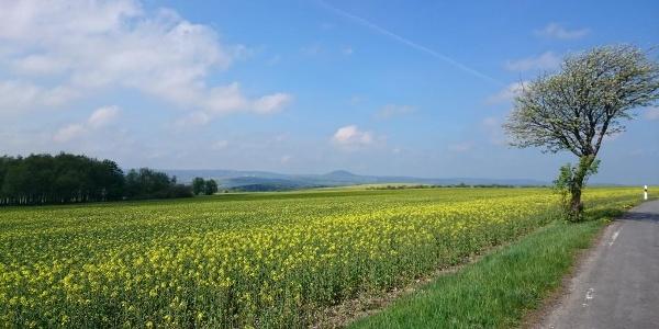 Panoramablick zwischen Fürstenwalde und Liebenau