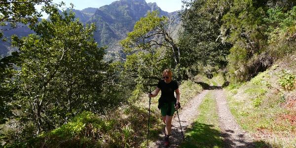 Aufstieg zur Levada do Pico Ruivo
