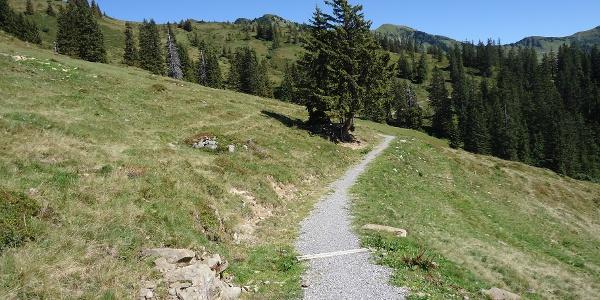 Weg zum Neuhornbachhaus