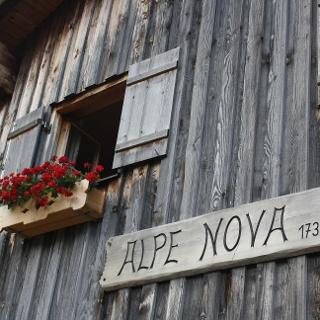 Alp Nova
