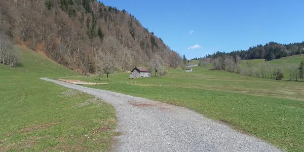 Hinterbergalpen Hittisau