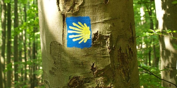 Logo des Jakobsweges