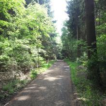 Waldweg, Grenze Nordrhein-Westfalen und Rheinland-Pfalz