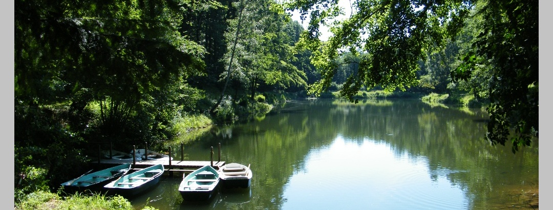 Der Hilschweiher liegt idyllisch eingebettet inmitten von Wäldern.