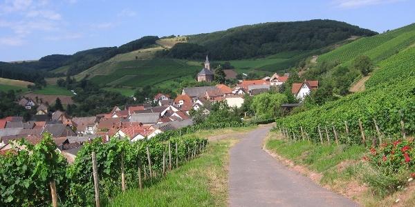 Weinberge Kirschroth
