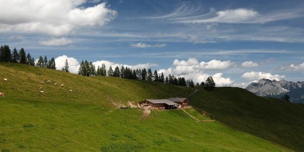 Blick auf die Karalm entlang des Salzburger Almenweges