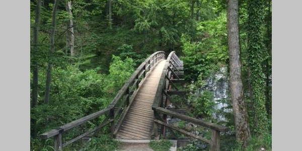 Brücke über die Schwarza beim Weichtalhaus