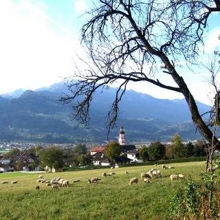 Baumkirchen