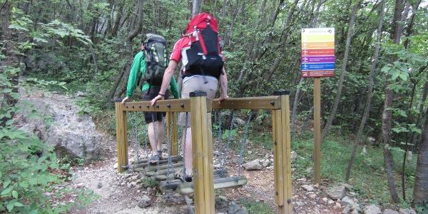 entlang vom Trimm-dich-Pfad zum Klettergarten