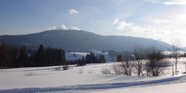 Winterlandschaft am Hanusel Winterwanderweg (7)