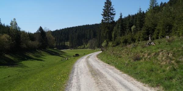 Kurz vor der Oberwallbachmühle