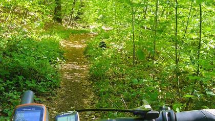 Trail auf der