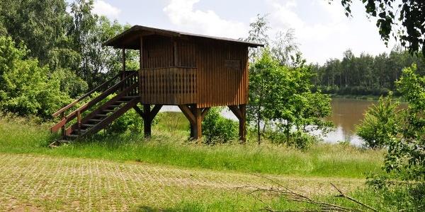 Beobachtungsturm am Födisch Teich