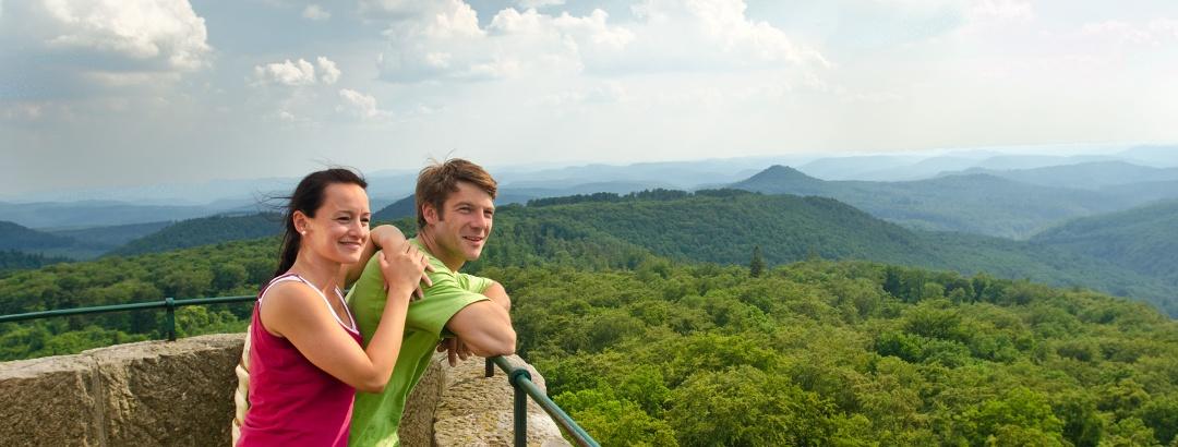 Blick vom Luitpoldturm auf über 300 bewaldete Gipfel