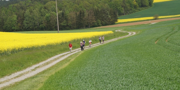 Weg nach Pfändhausen