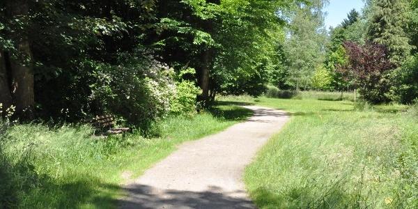 Park in Wurzbach