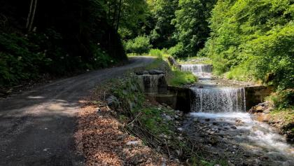 Am Weg von Achomitz auf den Bartolosattel