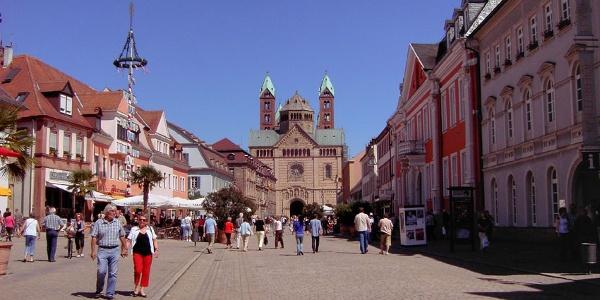 Die Maximilianstraße im Sommer.