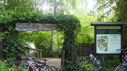 Waldschule Briesetal