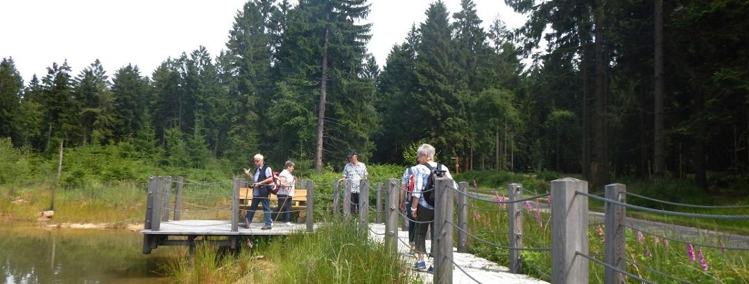 Schwalenberger Wald und Mörth