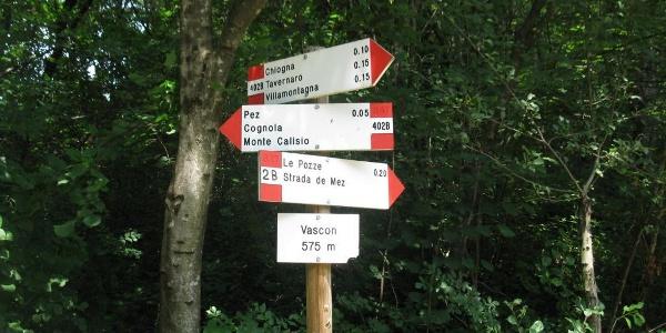 Trekking al Monte Calisio.