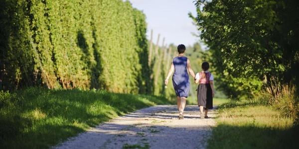 Wanderung auf dem Erlebnispfad Hopfen und Bier rund um Mainburg