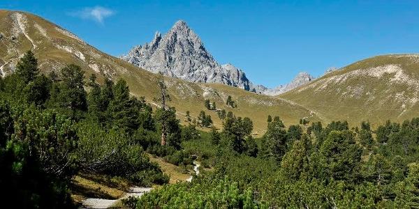Val Mingèr