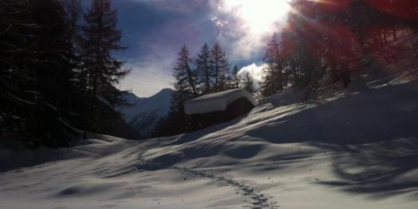 Oberfäld-Trail mit Hütte