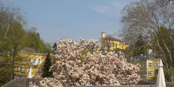 Freie Sicht auf die Kirche Bad Gleichenberg