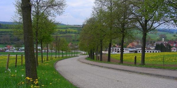 Zufahrtstraße zum Kloster.