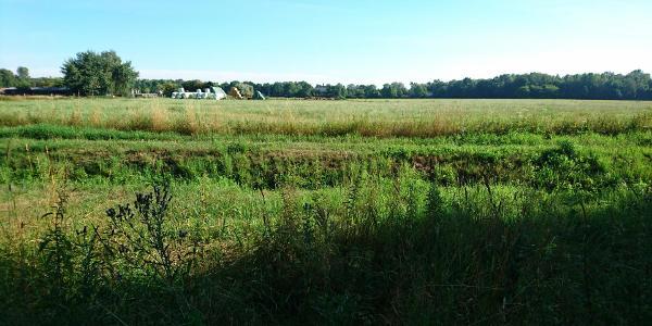 Heiligenseeer Felder