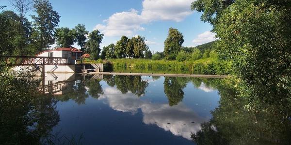 Werra Walkmühlenwehr bei Meiningen