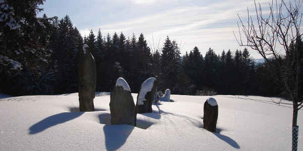Winterlandschaft am Hanusel Winterwanderweg (1)