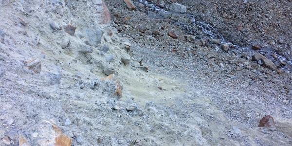 Steinböcke beim Zustieg.