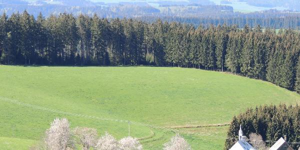 Blick von den Windrädern zum Feldberg