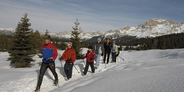 Winterwandern am Passo Lavazè