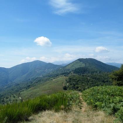 Unser Weg verläuft stets entlang des Bergkammes vom Monte Carza zum Monte Pian Bello.