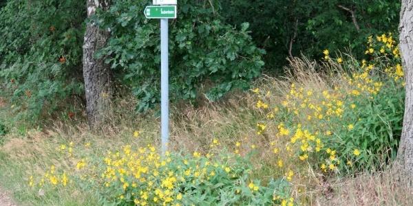 Hinweisschild am Wegesrand