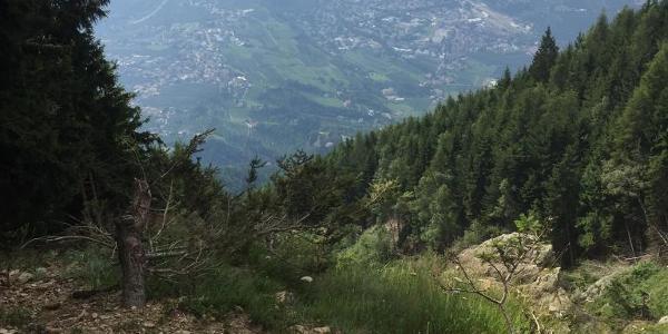 Blick auf Meran vom Aufstieg zur Mutspitz