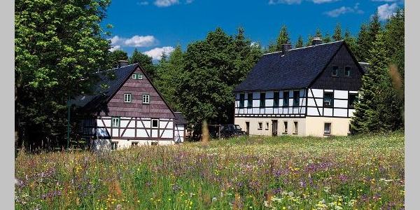 Blick auf Neuhermsdorf