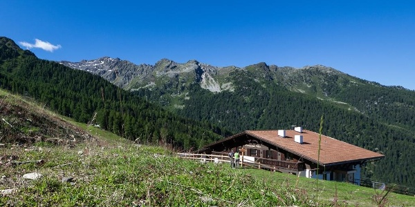Malga Tarres/Tarscher Alm alp
