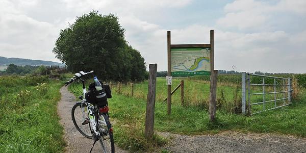 NSG Kiebitzwiese in Fröndenberg