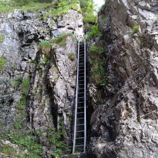 Leiter beim ersten Aufstieg zur Druesberghütte