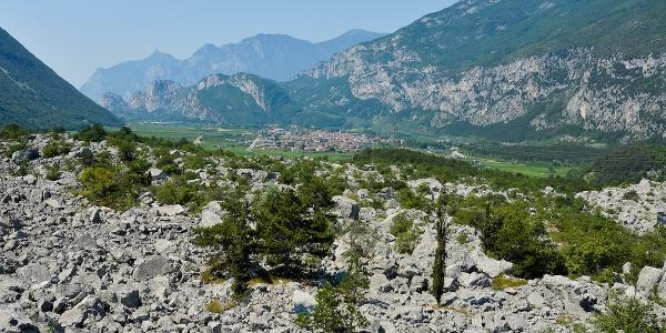"""Nature Reserve """"Marocche"""""""