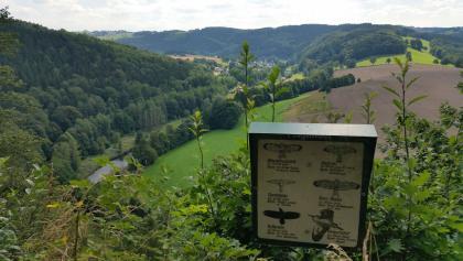 Ausblick am Kunnerstein