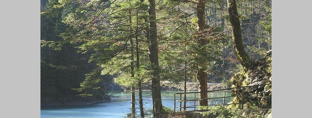 Staufensee in Dornbirn