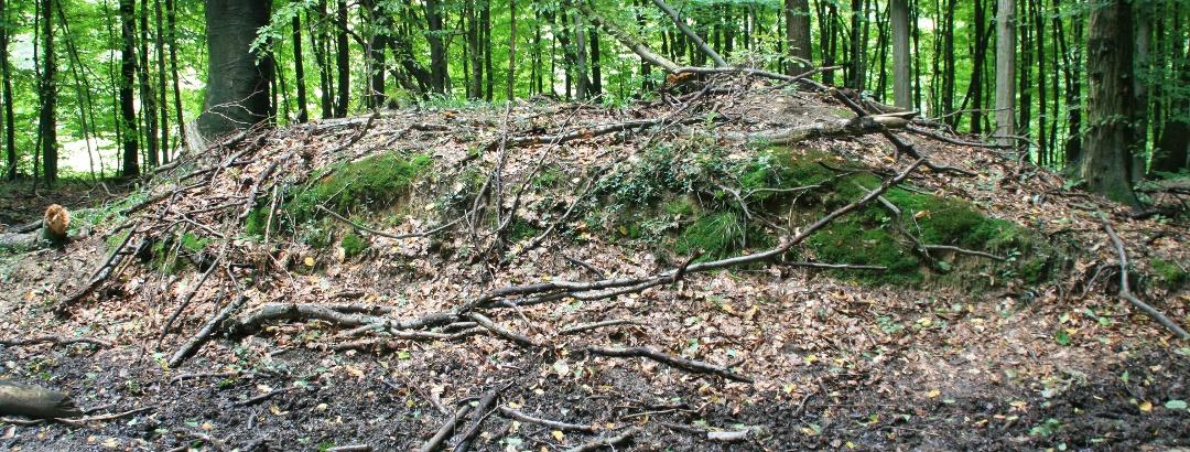 Römisches Hügelgrab