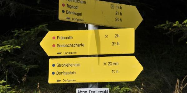 Start bei der Abzweigung Dorferwald