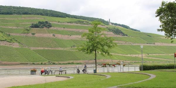 Etappe 1 Bingen - Mainz: Am Rhein entlang mit Blick auf das Niederwalddenkmal